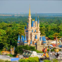 magic kingdom park 7014 photos 1766 reviews amusement parks