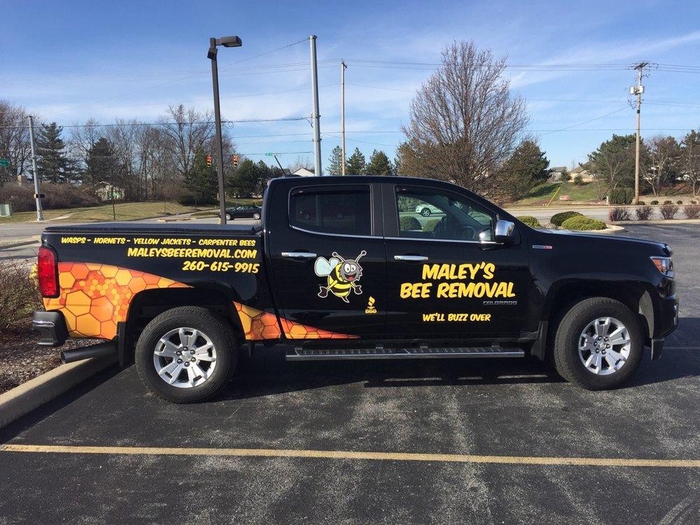 Maley's Bee Removal: 2777 E 950 N, Roanoke, IN