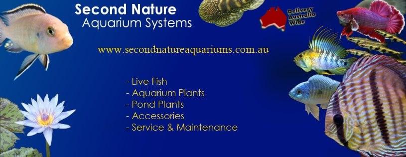 Second Nature Aquarium Systems Pet Shops Orange New