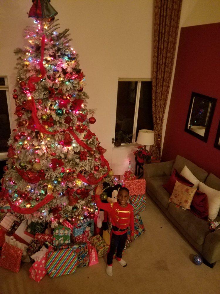 Photo of Lamb's Christmas Trees: Fairfield, CA