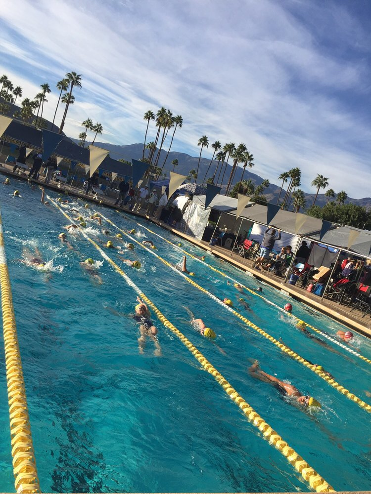 The Palm Springs Swim Center 15 Reviews Swimming Pools