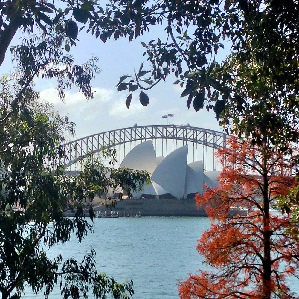Restaurants Near Royal Botanic Gardens Sydney