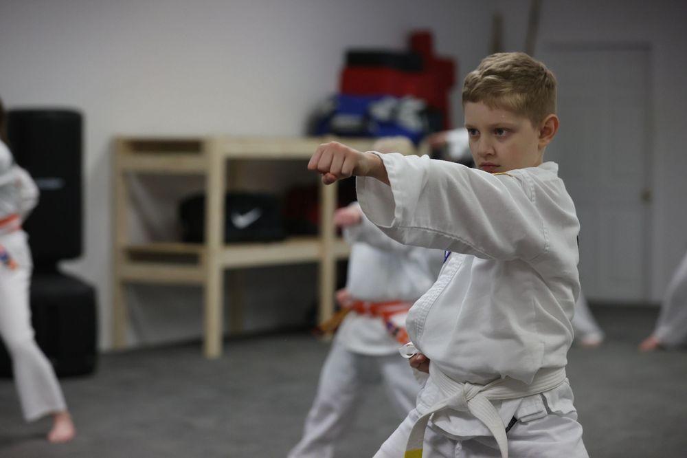 Missouri Taekwondo Institute: 605 Brunt Blvd, Sikeston, MO