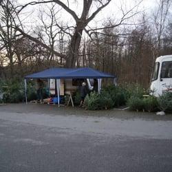 Am Tannenbaum Ratingen.Weihnachtsbaum Ratingen 12 Fotos Weihnachtsbaum Kölner Str 61