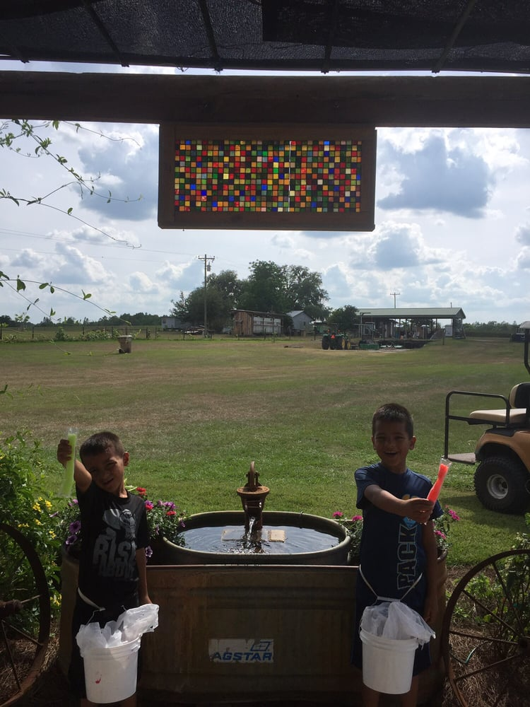 Blueberry Hill Farm: 5000 Berry Groves Rd, Clermont, FL