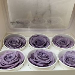 Photo of Downtown Flowers Net - Los Angeles, CA, United States. Lavander preserved