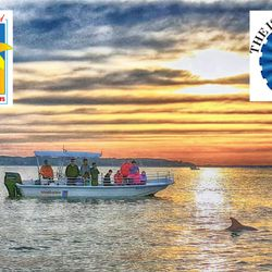Exciting Boat Excursions In Hilton Head And Amelia Island For All Ages