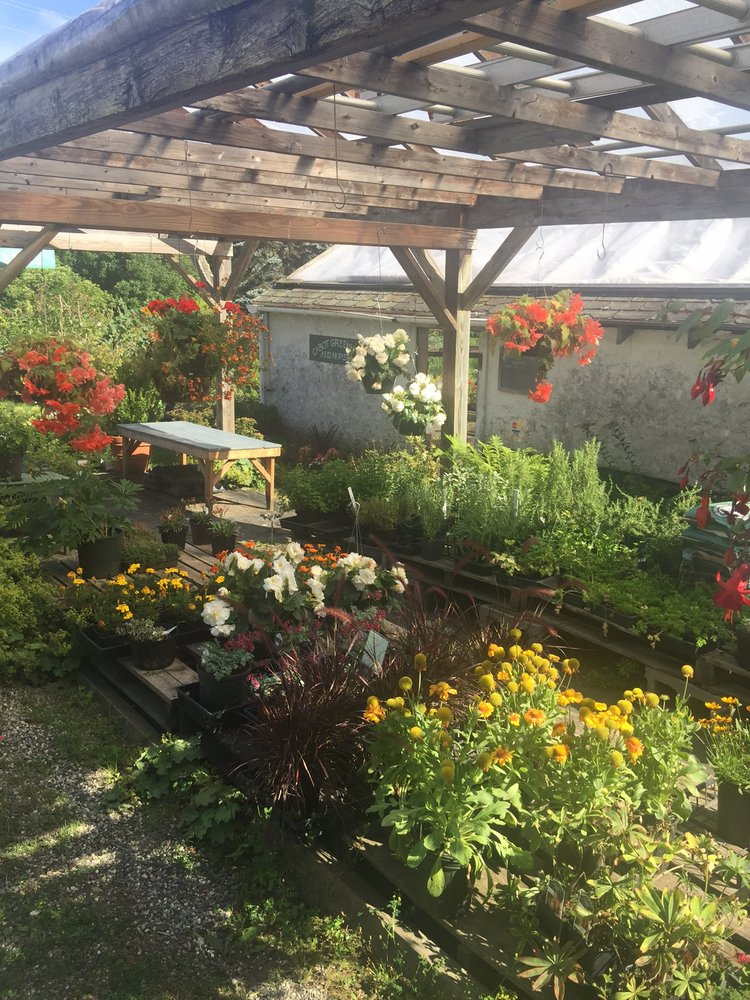 Cabot Greenhouse & Nursery: 1469 Route 215, Cabot, VT
