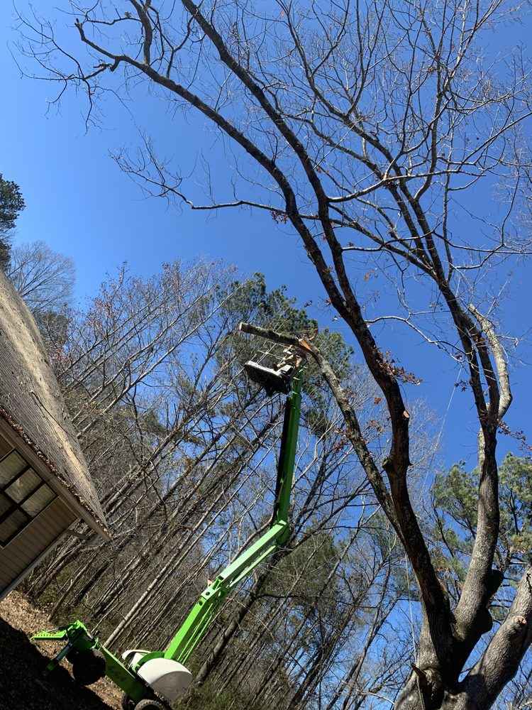 Casey's Tree and Limb Service: 305 Dallas Hwy, Villa Rica, GA