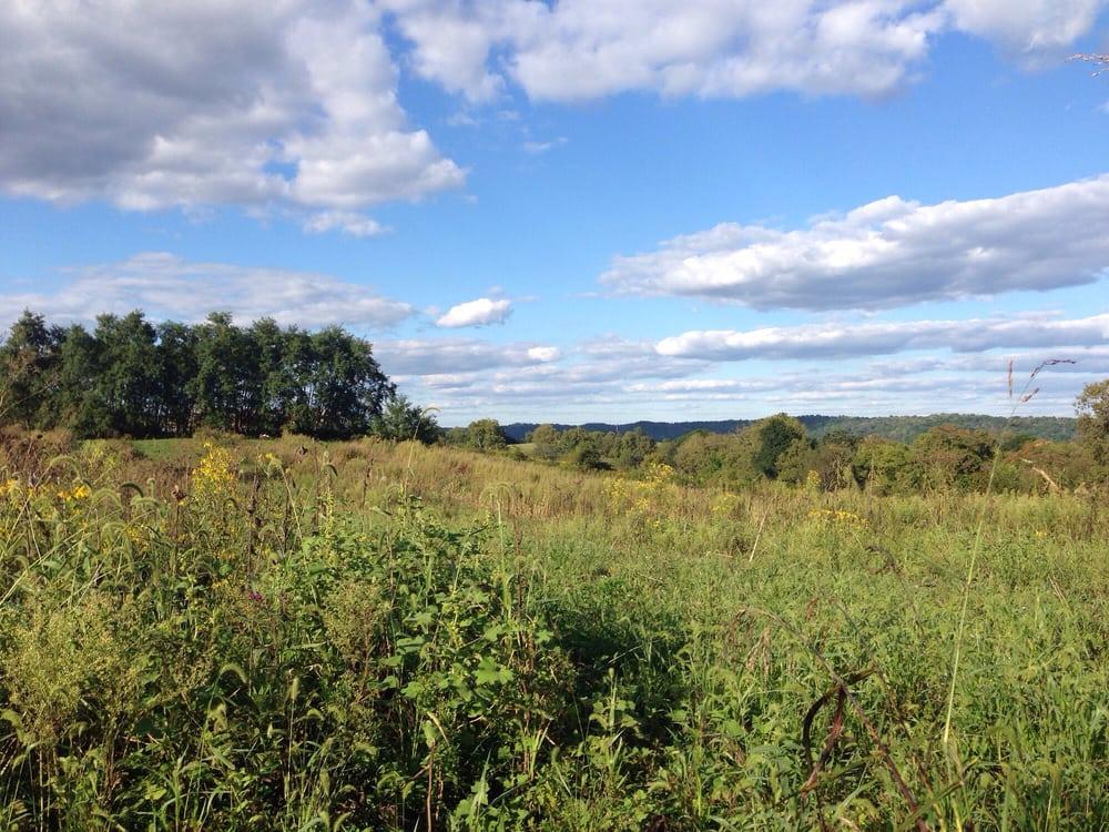 T.N. Sullivan Wildlife Management Area: 1262 Sullivan Ln, Frankfort, KY
