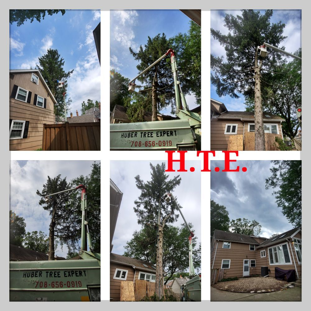 Huber Tree Service: Berwyn, IL