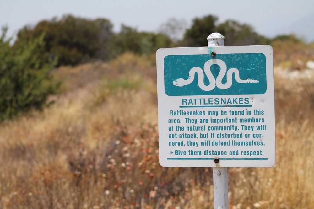 Santa Fe Dam Recreation Area: 15501 E Arrow Hwy, Irwindale, CA