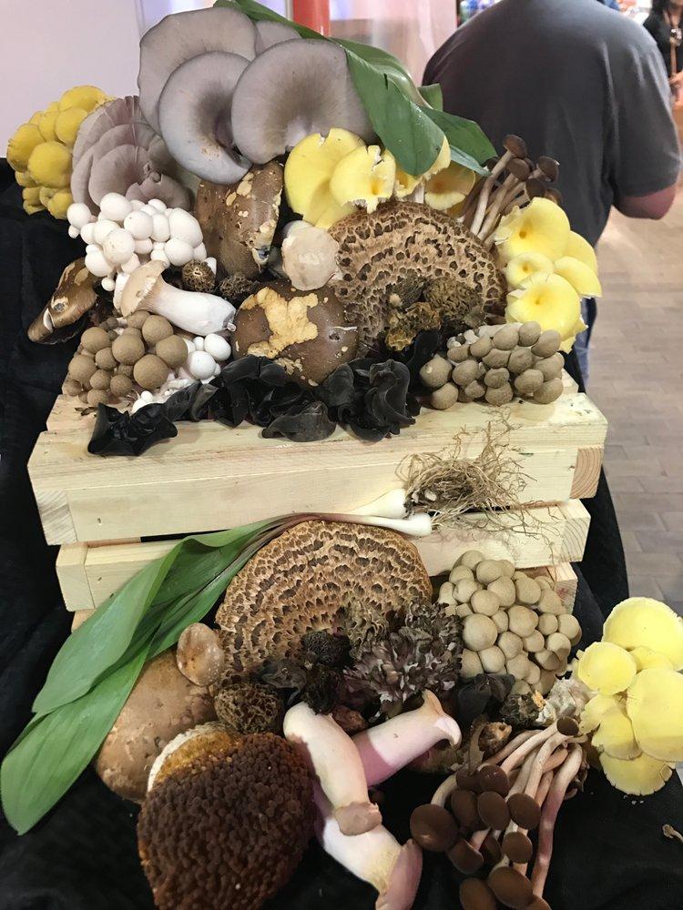 Mushroom & Company: 51 N 12th St, Philadelphia, PA