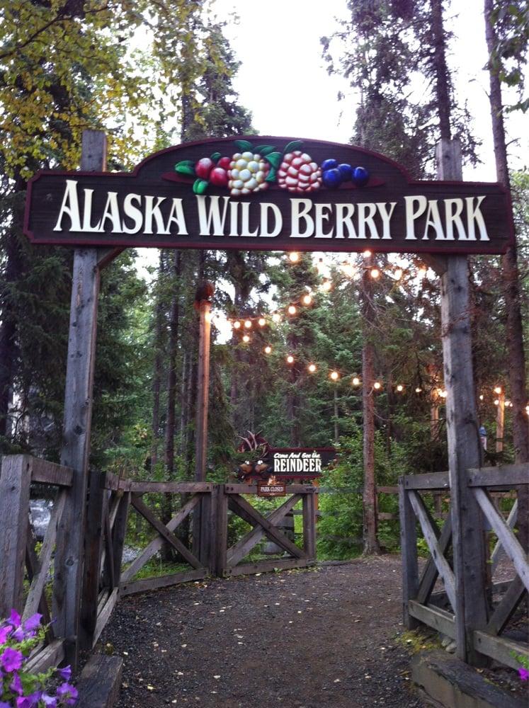 Wild Berry Theater