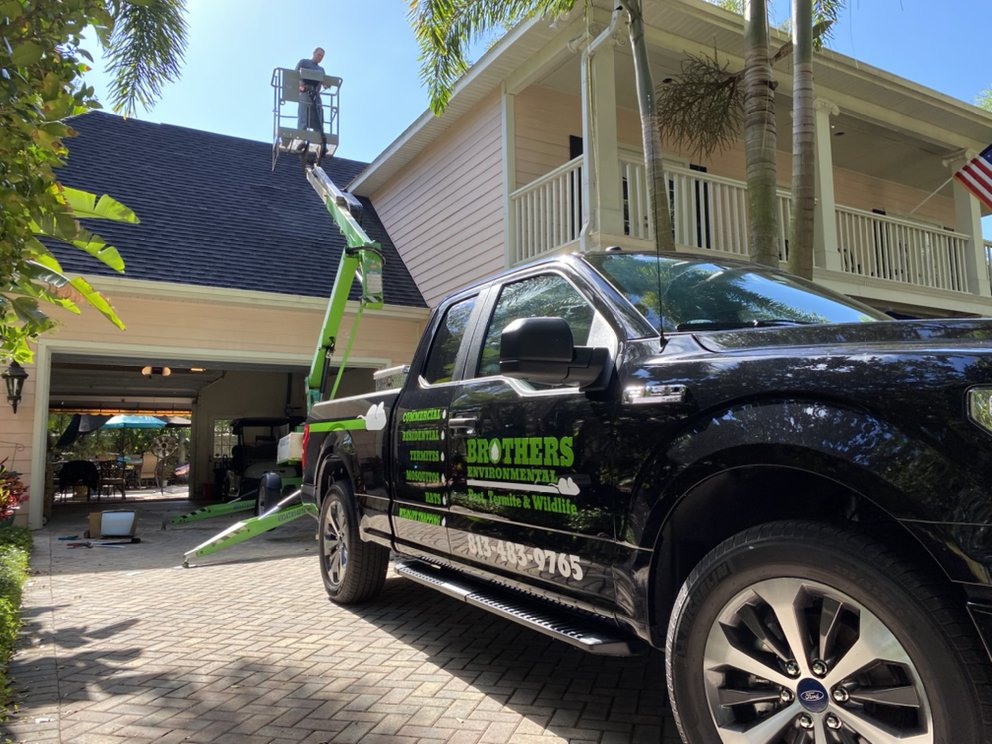 Brothers Environmental Services: Dover, FL