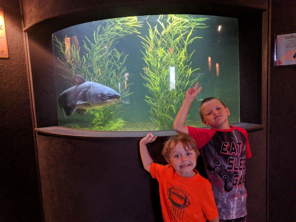 Medicine Park Aquarium and Natural Sciences Center: 1 Aquarium Dr Hwy 49, Medicine Park, OK