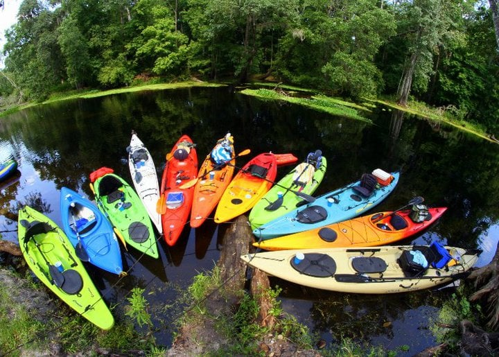 Kayak Tours Near Anna Maria Island