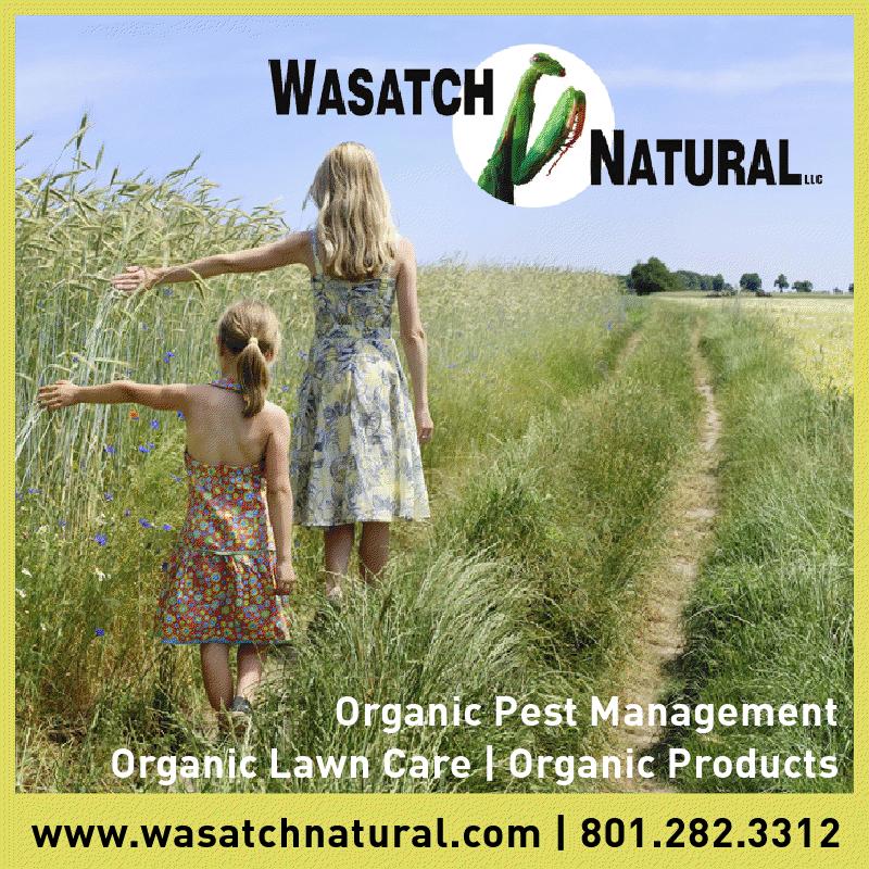 Wasatch natural organic services rimozione alberi for Aggiunte di saltbox house