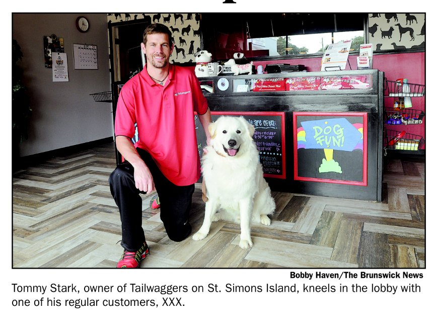 I Speak Dog - Behaviorist & Trainer