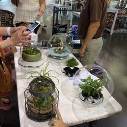 Photo Of Pike Nurseries Charlotte Nc United States Small E Terrarium