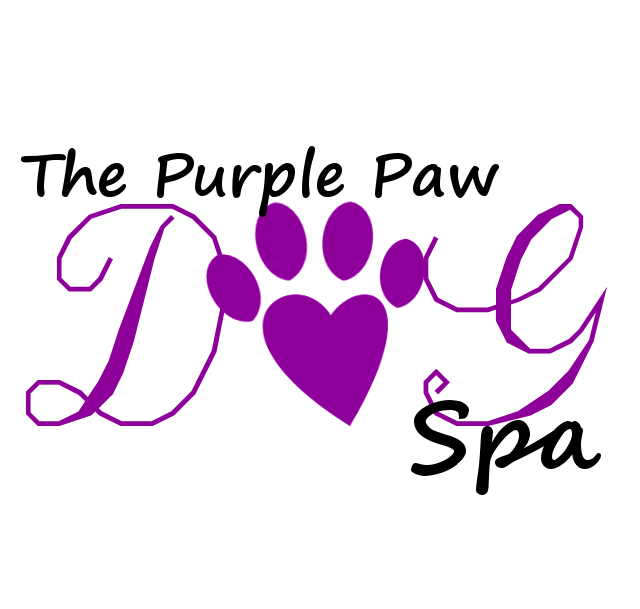 The Purple Paw Spa: 209 Robin St, Fountain, CO