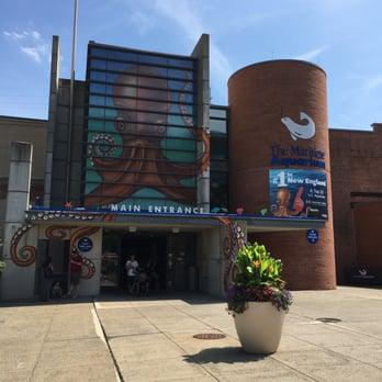 The Maritime Aquarium - 335 Photos & 114 Reviews ...