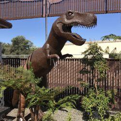 Photo Of Alladin Nursery Gift Watsonville Ca United States
