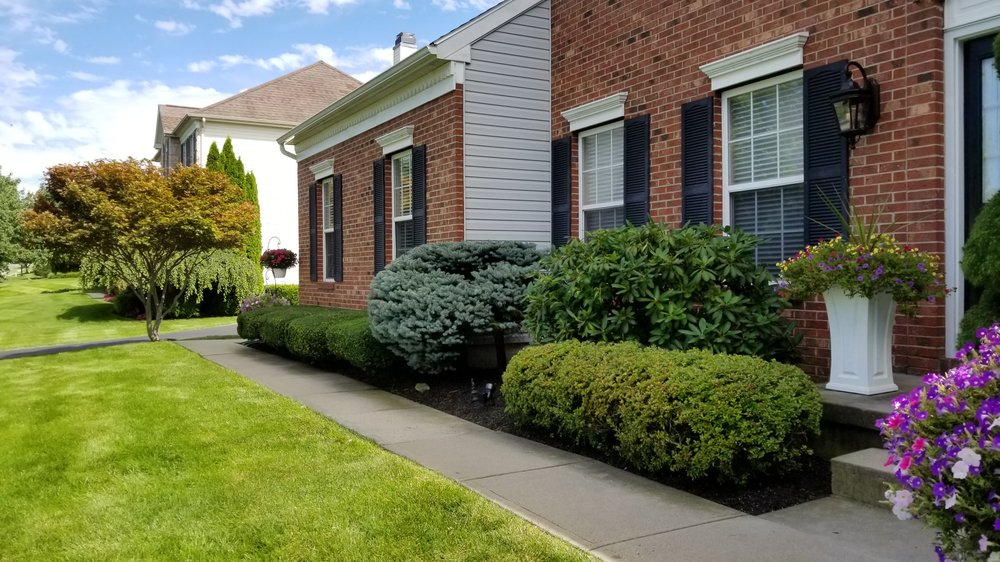 Jersey Lawn and Yard: Glen Gardner, NJ