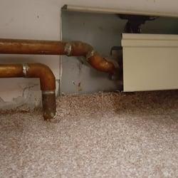 Photo Of Luna Hardwood Floors And Carpets   Stoughton, MA, United States.  Luna