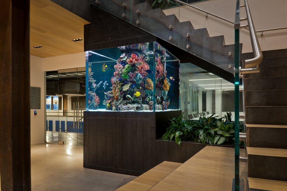 Oceans Aquarium Design