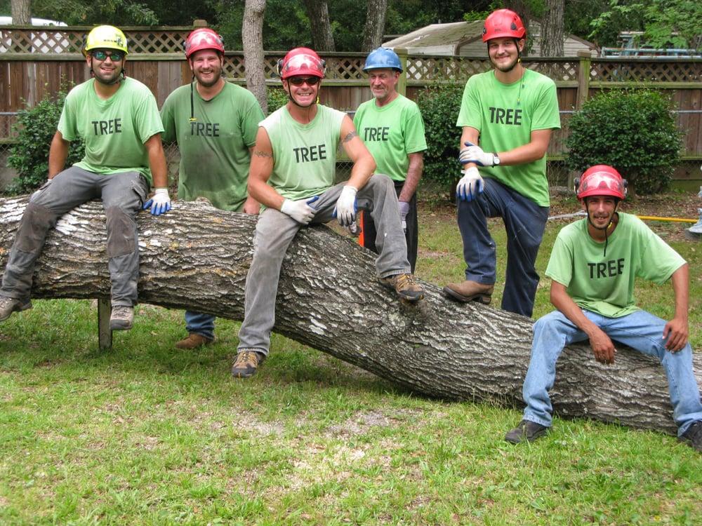 Tree Service Fort Walton Beach