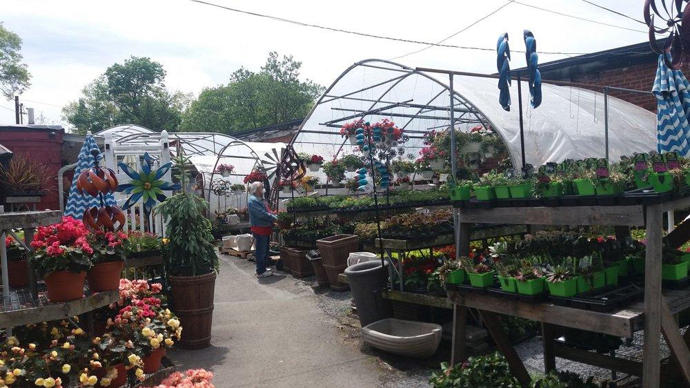 Lake Success Garden Mart: 82 Horace Harding Blvd, Great Neck, NY