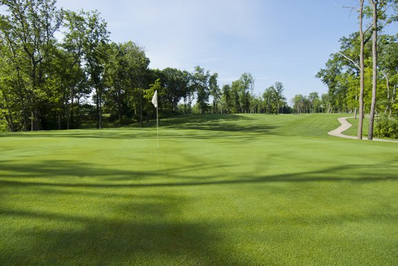 Edgewood Golf Club: 16497 Kennedy Rd, Auburn, IL