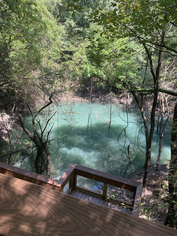 Devil's Millhopper State Geological Site: 4732 Millhopper Rd, Gainesville, FL