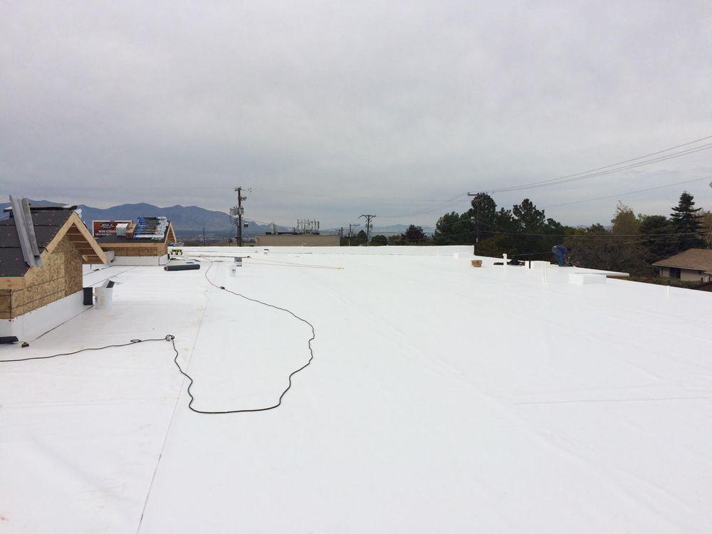 Friendly Neighbors Roofing: 393 Peach St, Leming, TX
