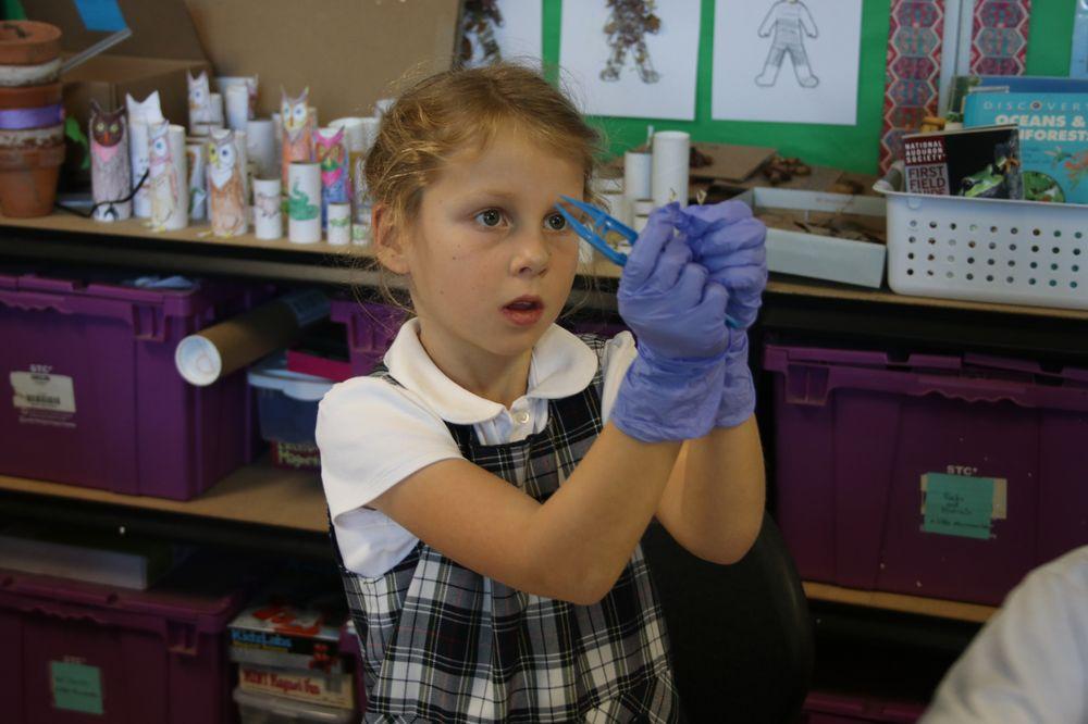 Woodland School: 360 La Cuesta Dr, Portola Valley, CA