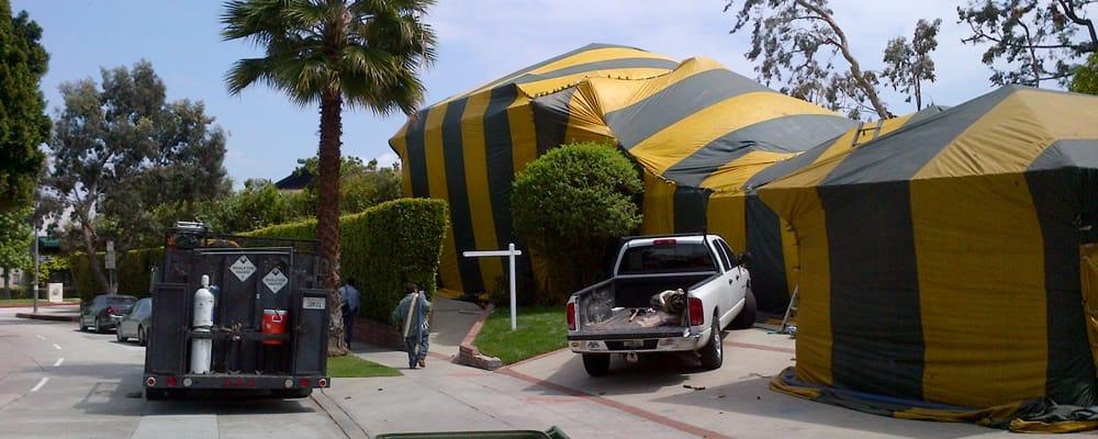 Tent Fumigation Specialists - 11 Reviews - Pest Control - 4248 Coronado Rd Fairview Shores Orlando FL - Phone Number - Yelp & Tent Fumigation Specialists - 11 Reviews - Pest Control - 4248 ...