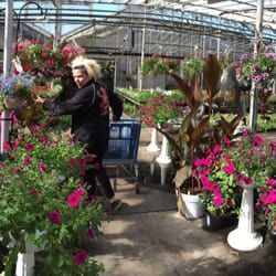 Great Photo Of Young Garden Mart   Warren, MI, United States