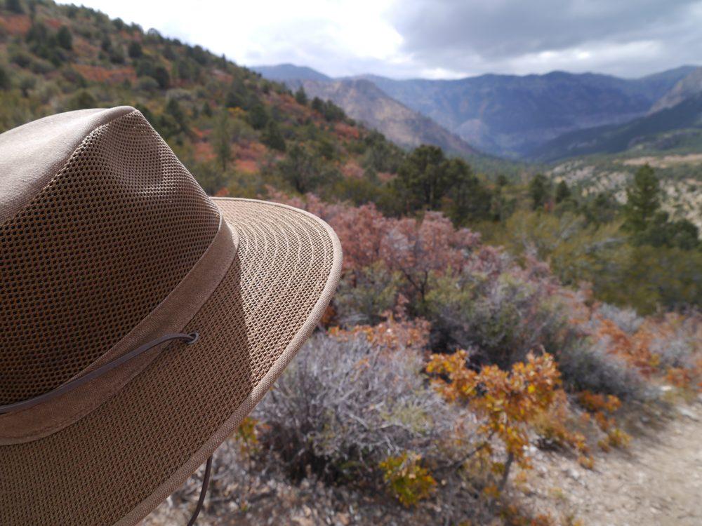 Hat Company of Las Vegas