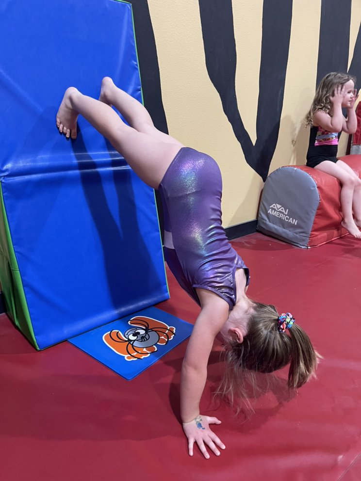 Siouxland Gymnastics Academy: 3310 Line Dr, Sioux City, IA