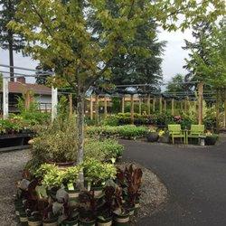 Shorty S Garden Center 12 Photos 21 Reviews Nurseries