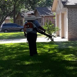 Bugs Incorporated Pest Control 1211 Avenue A Katy Tx