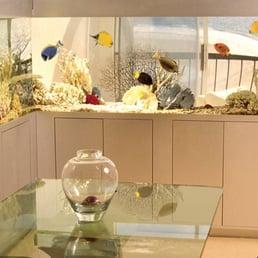 Photos For Living Art Aquatic Design Yelp