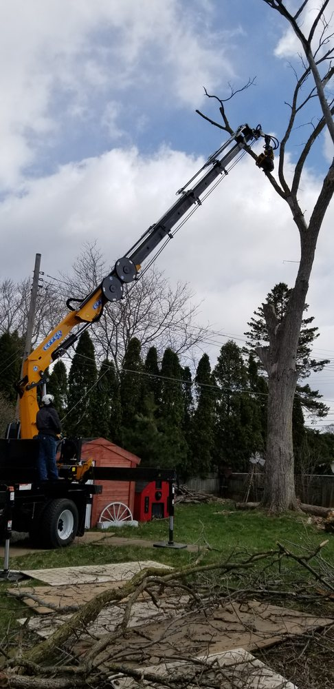 Dorshak Tree Specialists: 5140 N 126th St, Butler, WI
