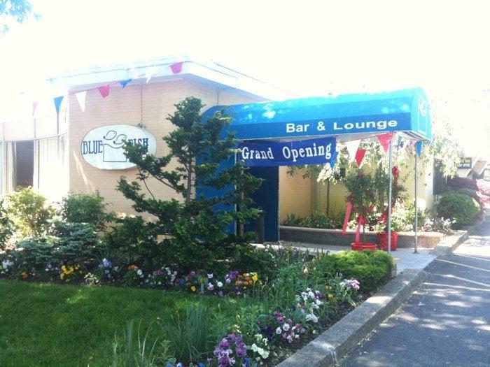 Blue Fish Japanese Restaurant Lounge Hicksville Ny