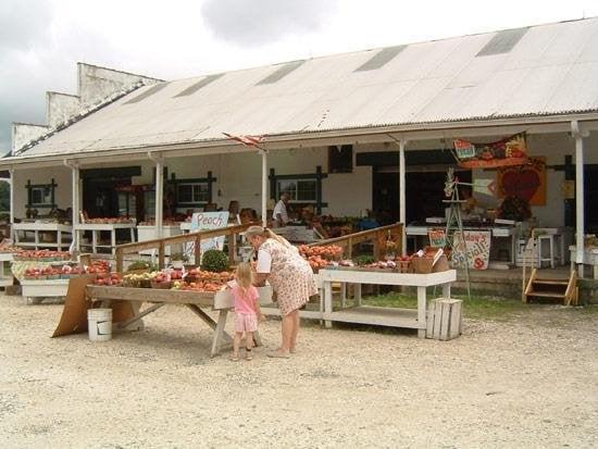 Sunny Slope Farms: 400 Greenwich Rd, Bridgeton, NJ