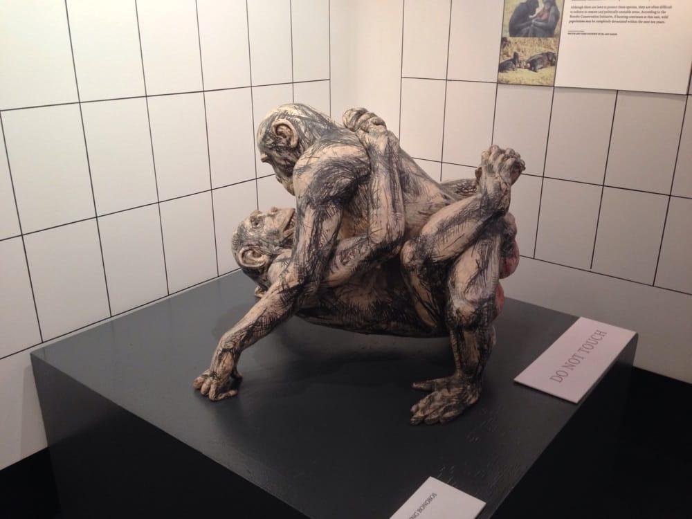 Gorilla position sex