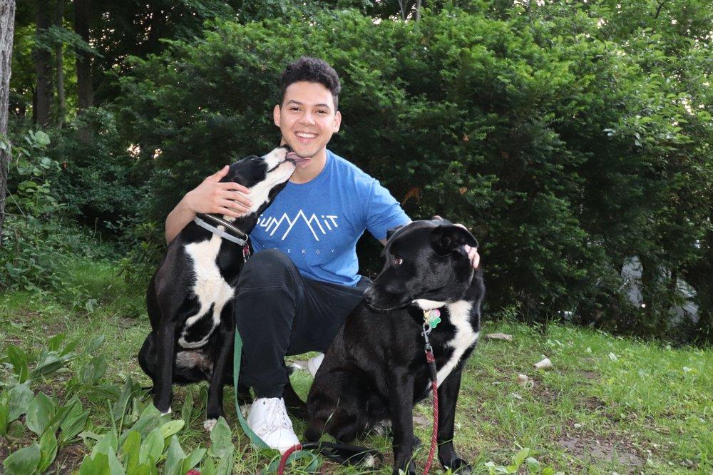 Local Pack Dog Training: 371 Bryant St, Malden, MA