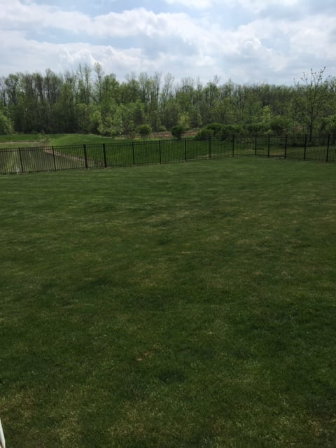Peerless Landscape Maintenance: 10060 County Rd, Clarence Center, NY