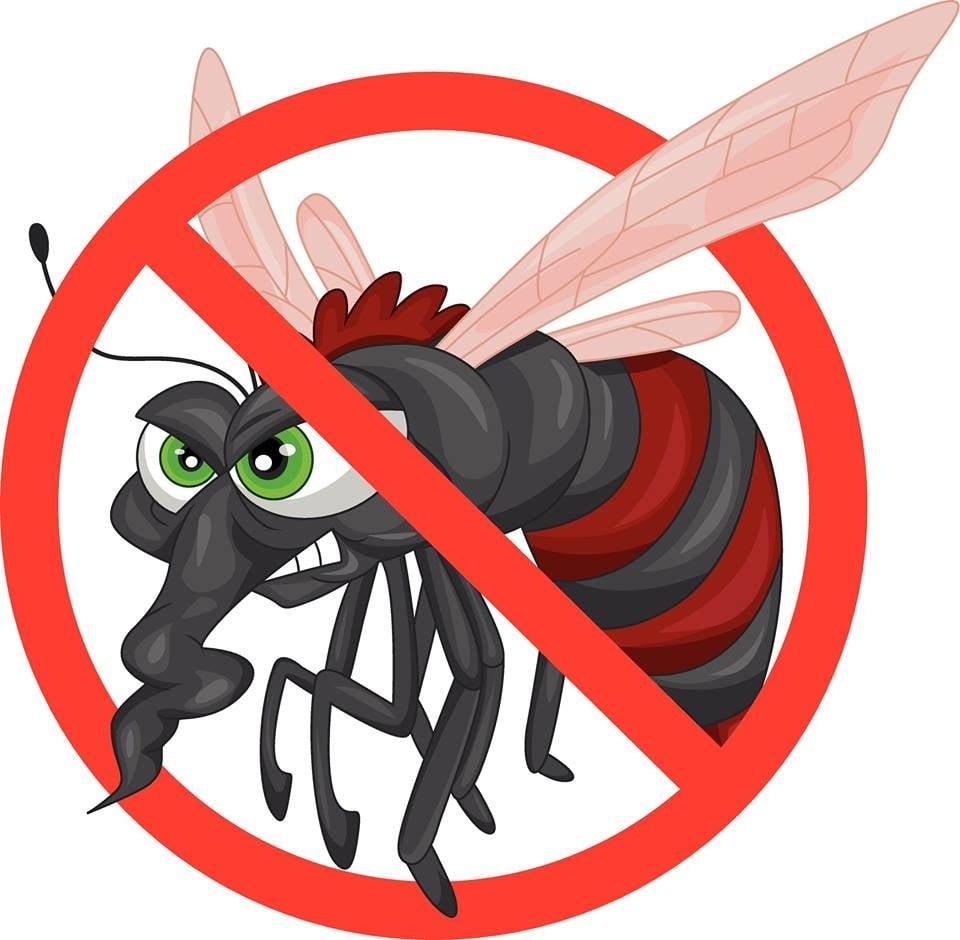 Fortress Termite & Pest Control: 475 E S St, Collierville, TN